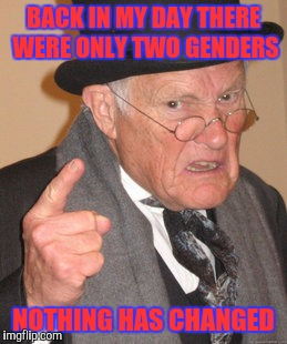 Back In My Day Meme | BACK IN MY DAY THERE WERE ONLY TWO GENDERS NOTHING HAS CHANGED | image tagged in memes,back in my day,transgender,transformers | made w/ Imgflip meme maker