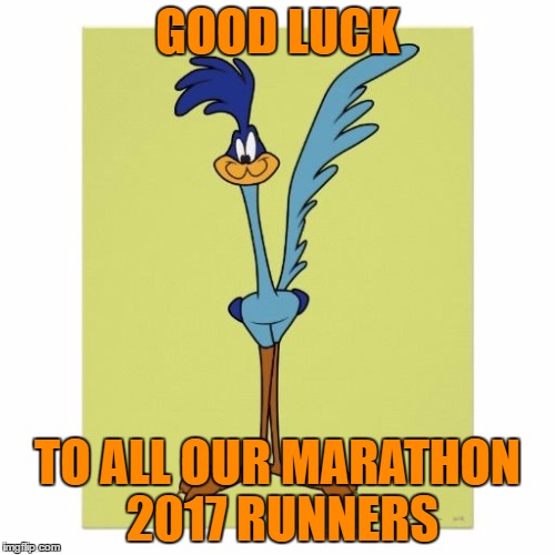 GOOD LUCK TO ALL OUR MARATHON 2017 RUNNERS | image tagged in roadrunner | made w/ Imgflip meme maker