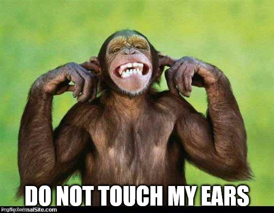 DO NOT TOUCH MY EARS | made w/ Imgflip meme maker