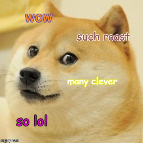 When someone comes up with a brilliant insult... | wow such roast many clever so lol | image tagged in memes,doge | made w/ Imgflip meme maker