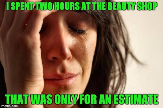 First World Problems Meme | I SPENT TWO HOURS AT THE BEAUTY SHOP THAT WAS ONLY FOR AN ESTIMATE | image tagged in memes,first world problems | made w/ Imgflip meme maker