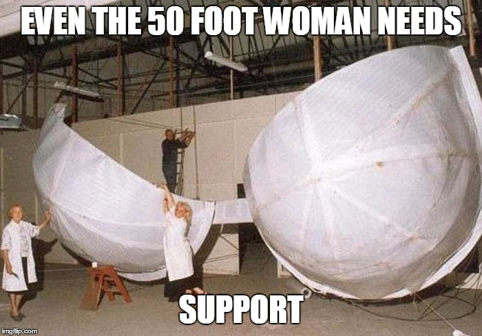 Bewbs | EVEN THE 50 FOOT WOMAN NEEDS SUPPORT | image tagged in cleavage week,memes | made w/ Imgflip meme maker