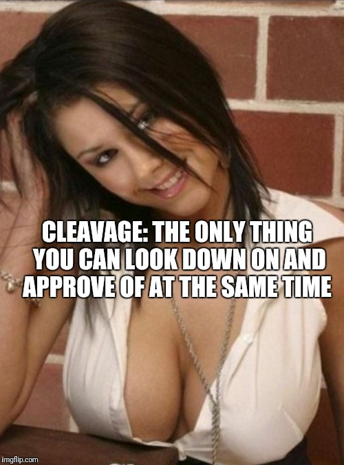 What If She Is Taller Though? (Cleavage Week A .Mushu.thedog Event) | CLEAVAGE: THE ONLY THING YOU CAN LOOK DOWN ON AND APPROVE OF AT THE SAME TIME | image tagged in funny,memes,cleavage week,cleavage | made w/ Imgflip meme maker