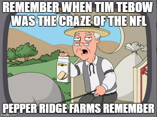 Family Guy Pepper Ridge | REMEMBER WHEN TIM TEBOW WAS THE CRAZE OF THE NFL PEPPER RIDGE FARMS REMEMBER | image tagged in family guy pepper ridge,nfl,funny memes | made w/ Imgflip meme maker
