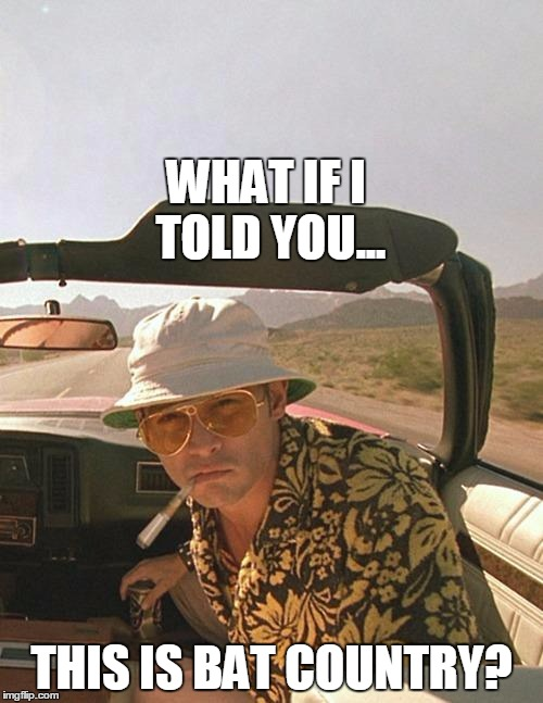 WHAT IF I TOLD YOU... THIS IS BAT COUNTRY? | image tagged in hunter s thompson,bat man,country,drugs,fear and loathing in las vegas,short satisfaction vs truth | made w/ Imgflip meme maker
