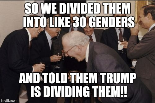 Laughing Men In Suits Meme | SO WE DIVIDED THEM INTO LIKE 30 GENDERS AND TOLD THEM TRUMP IS DIVIDING THEM!! | image tagged in memes,laughing men in suits | made w/ Imgflip meme maker