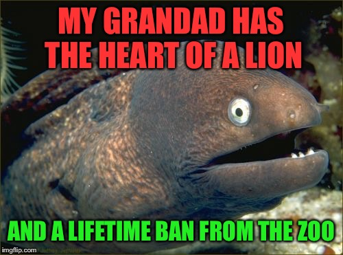 Bad Joke Eel Meme | MY GRANDAD HAS THE HEART OF A LION AND A LIFETIME BAN FROM THE ZOO | image tagged in memes,bad joke eel | made w/ Imgflip meme maker