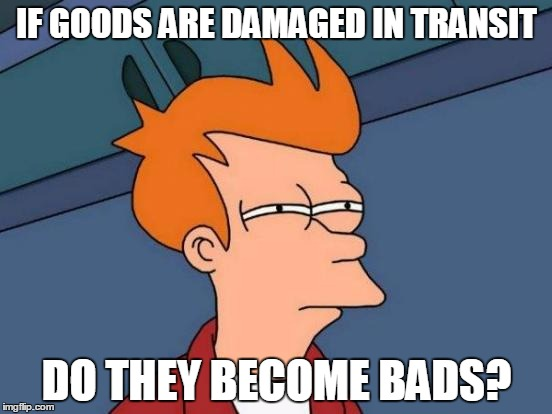 We're being pun-ished. | IF GOODS ARE DAMAGED IN TRANSIT DO THEY BECOME BADS? | image tagged in memes,futurama fry,bad puns | made w/ Imgflip meme maker