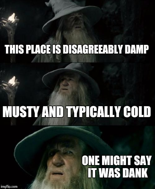 Confused Gandalf Meme | THIS PLACE IS DISAGREEABLY DAMP MUSTY AND TYPICALLY COLD ONE MIGHT SAY IT WAS DANK | image tagged in memes,confused gandalf | made w/ Imgflip meme maker