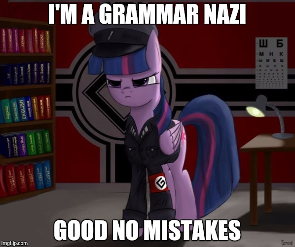 grammer nazi | I'M A GRAMMAR NAZI GOOD NO MISTAKES | image tagged in grammer nazi | made w/ Imgflip meme maker