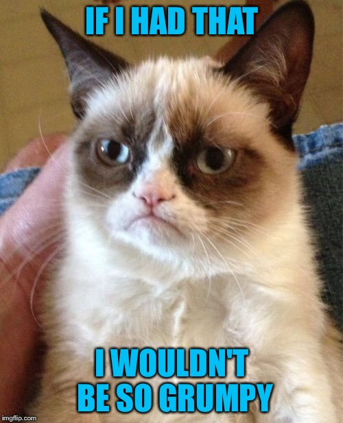 Grumpy Cat Meme | IF I HAD THAT I WOULDN'T BE SO GRUMPY | image tagged in memes,grumpy cat | made w/ Imgflip meme maker