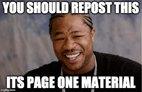 Yo Dawg Heard You Meme | YOU SHOULD REPOST THIS ITS PAGE ONE MATERIAL | image tagged in memes,yo dawg heard you | made w/ Imgflip meme maker