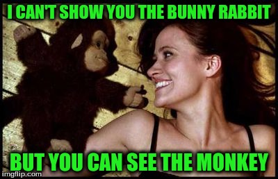 I CAN'T SHOW YOU THE BUNNY RABBIT BUT YOU CAN SEE THE MONKEY | made w/ Imgflip meme maker