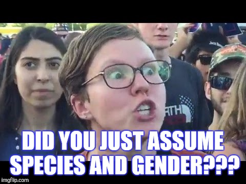 DID YOU JUST ASSUME SPECIES AND GENDER??? | made w/ Imgflip meme maker