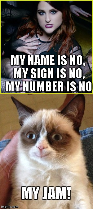 Grumpy cat jam | MY NAME IS NO, MY SIGN IS NO, MY NUMBER IS NO MY JAM! | image tagged in jam,grumpycat,no,meghan trainor no,meghan trainor | made w/ Imgflip meme maker