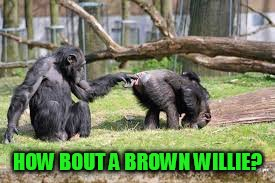 HOW BOUT A BROWN WILLIE? | made w/ Imgflip meme maker