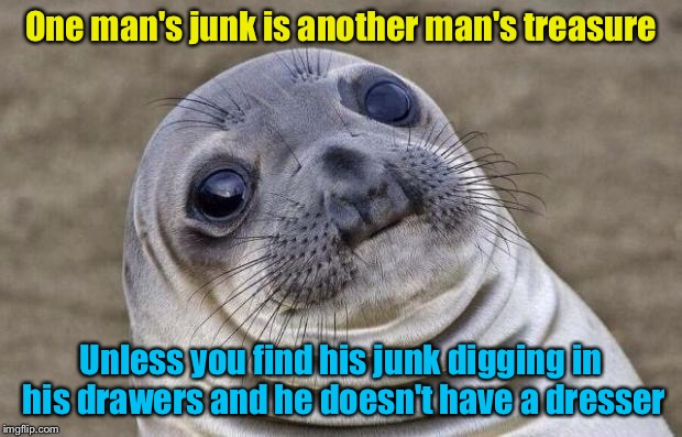 Awkward Moment Sealion Meme | One man's junk is another man's treasure Unless you find his junk digging in his drawers and he doesn't have a dresser | image tagged in memes,awkward moment sealion | made w/ Imgflip meme maker