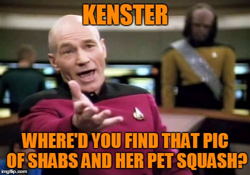 Picard Wtf Meme | KENSTER WHERE'D YOU FIND THAT PIC OF SHABS AND HER PET SQUASH? | image tagged in memes,picard wtf | made w/ Imgflip meme maker