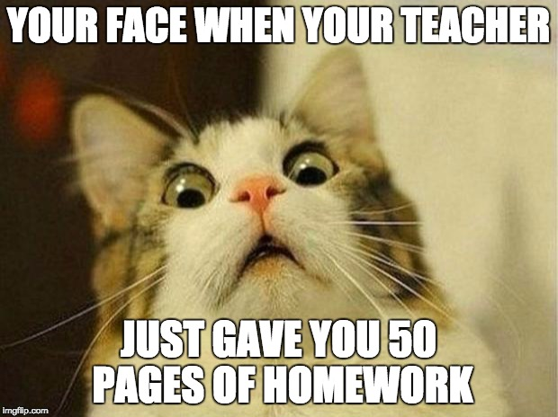 Scared Cat Meme | YOUR FACE WHEN YOUR TEACHER JUST GAVE YOU 50 PAGES OF HOMEWORK | image tagged in memes,scared cat | made w/ Imgflip meme maker
