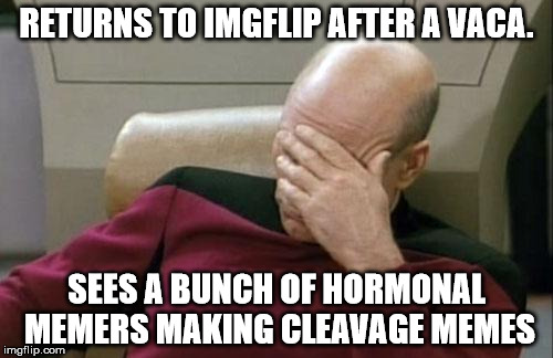 And this is why I separate myself from society... | RETURNS TO IMGFLIP AFTER A VACA. SEES A BUNCH OF HORMONAL MEMERS MAKING CLEAVAGE MEMES | image tagged in memes,captain picard facepalm,idiots | made w/ Imgflip meme maker