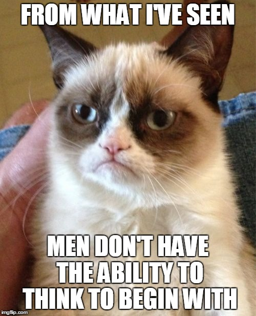 Grumpy Cat Meme | FROM WHAT I'VE SEEN MEN DON'T HAVE THE ABILITY TO THINK TO BEGIN WITH | image tagged in memes,grumpy cat | made w/ Imgflip meme maker