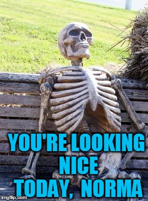 Waiting Skeleton Meme | YOU'RE LOOKING NICE TODAY,  NORMA | image tagged in memes,waiting skeleton | made w/ Imgflip meme maker