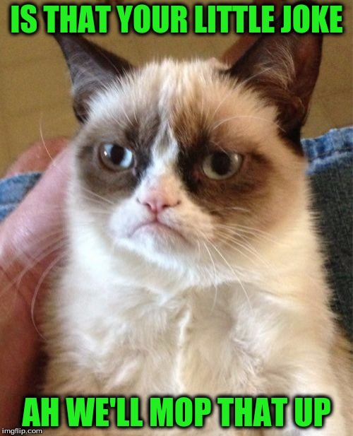 Grumpy Cat Meme | IS THAT YOUR LITTLE JOKE AH WE'LL MOP THAT UP | image tagged in memes,grumpy cat | made w/ Imgflip meme maker