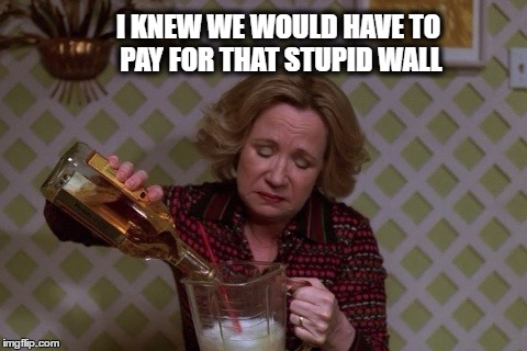 Kitty Drinkgin that 70s show | I KNEW WE WOULD HAVE TO PAY FOR THAT STUPID WALL | image tagged in kitty drinkgin that 70s show | made w/ Imgflip meme maker