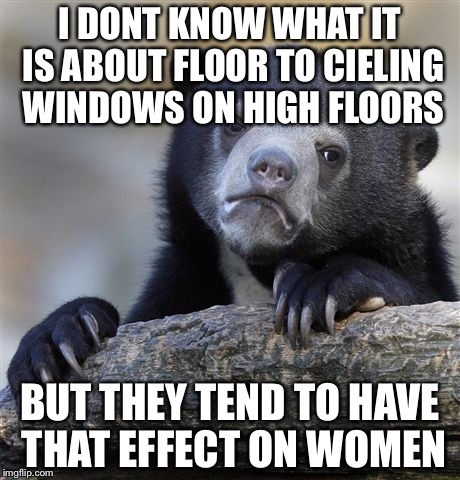 Confession Bear Meme | I DONT KNOW WHAT IT IS ABOUT FLOOR TO CIELING WINDOWS ON HIGH FLOORS BUT THEY TEND TO HAVE THAT EFFECT ON WOMEN | image tagged in memes,confession bear | made w/ Imgflip meme maker