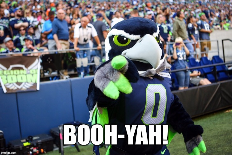 Blitz the Seahawk | BOOH-YAH! | image tagged in blitz the seahawk | made w/ Imgflip meme maker