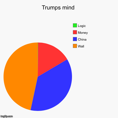 Trumps mind | Wall, China, Money, Logic | image tagged in funny,pie charts | made w/ Imgflip pie chart maker