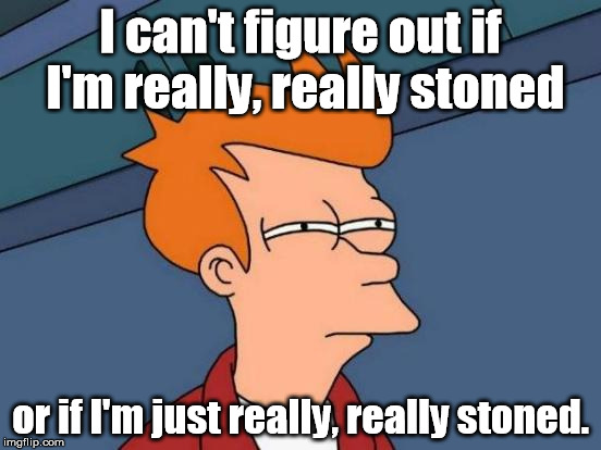 I didn't even remember creating this meme. | I can't figure out if I'm really, really stoned or if I'm just really, really stoned. | image tagged in memes,futurama fry | made w/ Imgflip meme maker