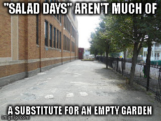 "REWRITING HISTORY LESSON | ""SALAD DAYS"" AREN'T MUCH OF A SUBSTITUTE FOR AN EMPTY GARDEN 