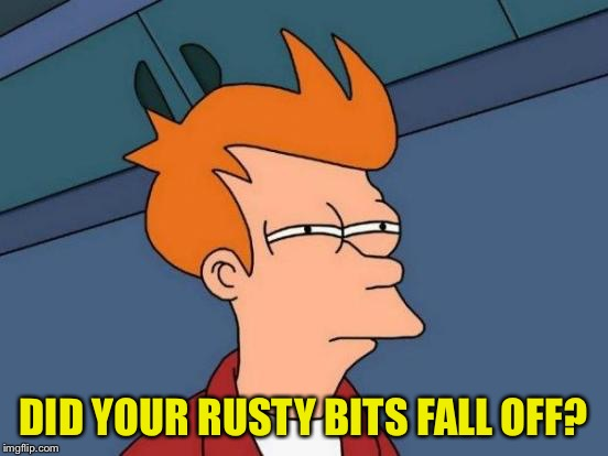 Futurama Fry Meme | DID YOUR RUSTY BITS FALL OFF? | image tagged in memes,futurama fry | made w/ Imgflip meme maker