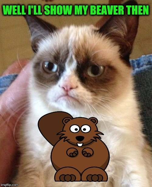 Grumpy Cat Meme | WELL I'LL SHOW MY BEAVER THEN | image tagged in memes,grumpy cat | made w/ Imgflip meme maker