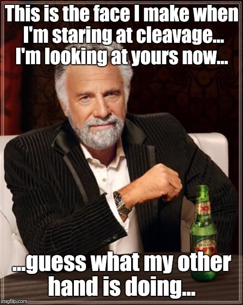 The Most Interesting Man In The World Meme | This is the face I make when I'm staring at cleavage... I'm looking at yours now... ...guess what my other hand is doing... | image tagged in memes,the most interesting man in the world | made w/ Imgflip meme maker