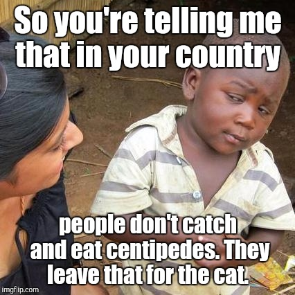 Third World Skeptical Kid Meme | So you're telling me that in your country people don't catch and eat centipedes. They leave that for the cat. | image tagged in memes,third world skeptical kid | made w/ Imgflip meme maker