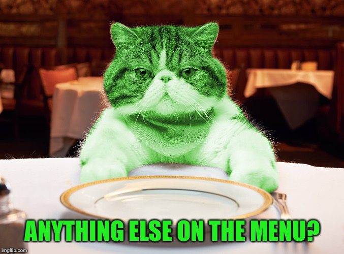RayCat Hungry | ANYTHING ELSE ON THE MENU? | image tagged in raycat hungry | made w/ Imgflip meme maker