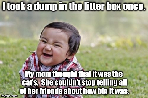 My little brother did this. | I took a dump in the litter box once. My mom thought that it was the cat's.  She couldn't stop telling all of her friends about how big it w | image tagged in memes,evil toddler | made w/ Imgflip meme maker
