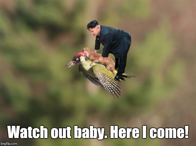 1810in.jpg | Watch out baby. Here I come! | image tagged in 1810injpg | made w/ Imgflip meme maker