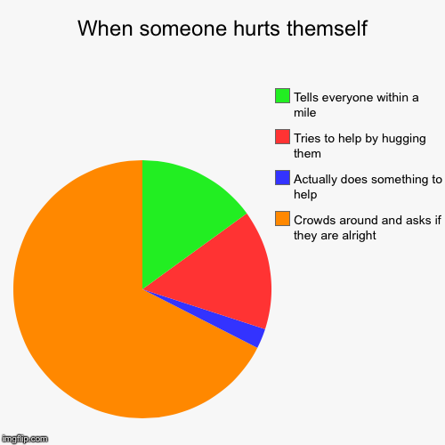 When someone hurts themself | Crowds around and asks if they are alright , Actually does something to help, Tries to help by hugging them, T | image tagged in funny,pie charts | made w/ Imgflip pie chart maker