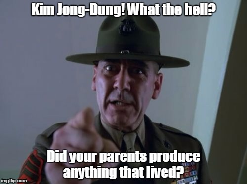 Sergeant Hartmann | Kim Jong-Dung! What the hell? Did your parents produce anything that lived? | image tagged in memes,sergeant hartmann | made w/ Imgflip meme maker