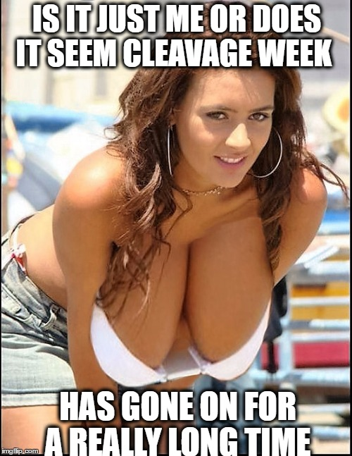 In 20 years those will be knees (cleavage week)  | IS IT JUST ME OR DOES IT SEEM CLEAVAGE WEEK HAS GONE ON FOR A REALLY LONG TIME | image tagged in cleavage week,cleavage,big boobs,memes,funny | made w/ Imgflip meme maker