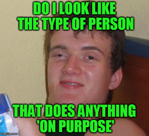 10 Guy Meme | DO I LOOK LIKE THE TYPE OF PERSON THAT DOES ANYTHING 'ON PURPOSE' | image tagged in memes,10 guy | made w/ Imgflip meme maker