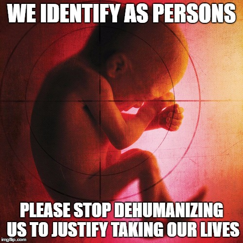 fetus | WE IDENTIFY AS PERSONS PLEASE STOP DEHUMANIZING US TO JUSTIFY TAKING OUR LIVES | image tagged in fetus | made w/ Imgflip meme maker