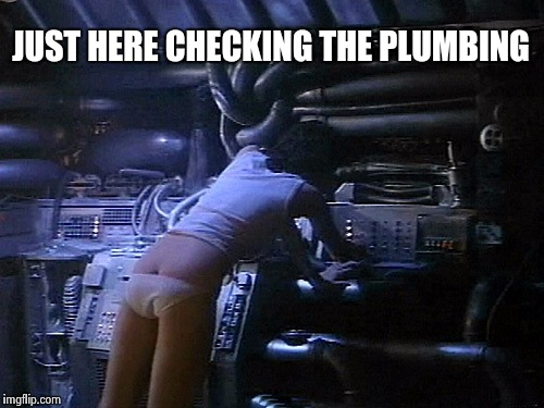 Ripley's butt | JUST HERE CHECKING THE PLUMBING | image tagged in ripley's butt | made w/ Imgflip meme maker