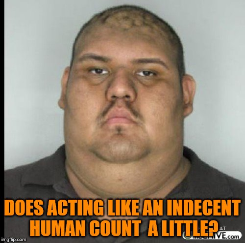 DOES ACTING LIKE AN INDECENT HUMAN COUNT  A LITTLE? | made w/ Imgflip meme maker