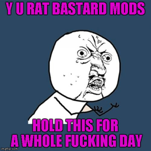 Y U No Meme | Y U RAT BASTARD MODS HOLD THIS FOR A WHOLE F**KING DAY | image tagged in memes,y u no | made w/ Imgflip meme maker