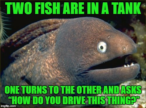 "Bad Joke Eel Meme | TWO FISH ARE IN A TANK ONE TURNS TO THE OTHER AND ASKS ""HOW DO YOU DRIVE THIS THING?"" 