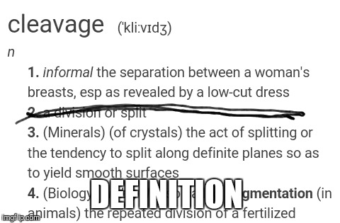 DEFINITION | made w/ Imgflip meme maker